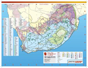 South Africa 2020 LS